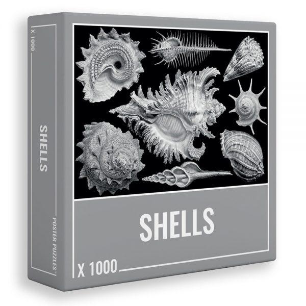 1000 PIEZAS – SHELLS
